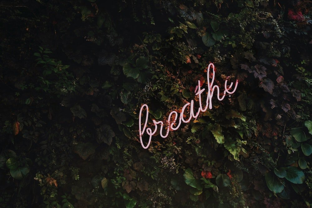Neon sign in leaves that reads breathe